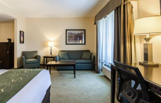 Suite Comfort Suites Gothenburg