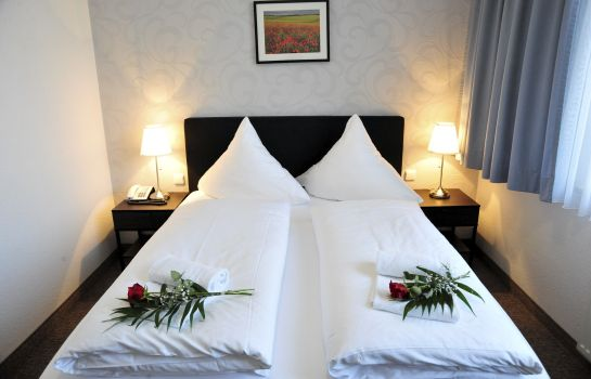 Double room (standard) Akzent Hotel Acamed Resort