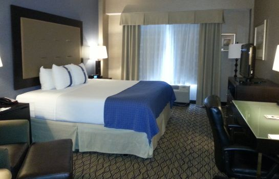 Zimmer Holiday Inn DETROIT METRO AIRPORT