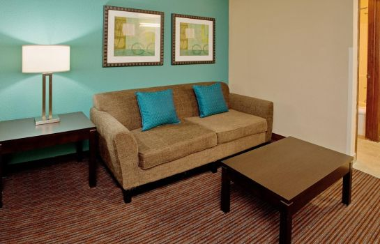 Suite Holiday Inn Express & Suites NORTH KANSAS CITY