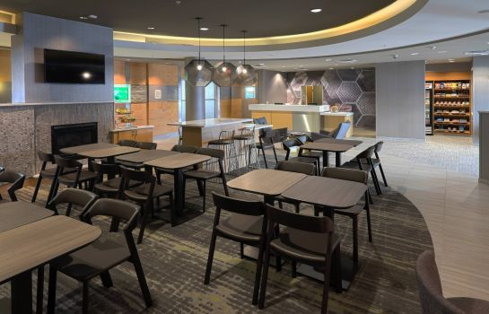 Hol hotelowy SpringHill Suites Albany-Colonie