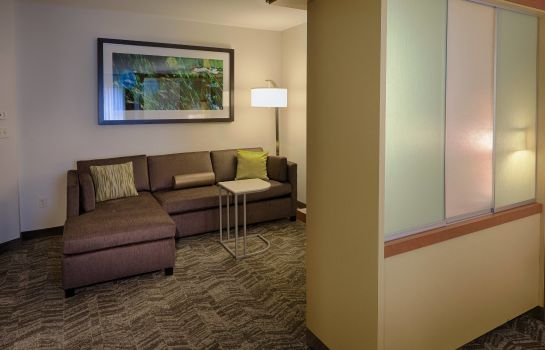 Suite SpringHill Suites Albany-Colonie