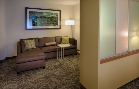 Zimmer SpringHill Suites Albany-Colonie