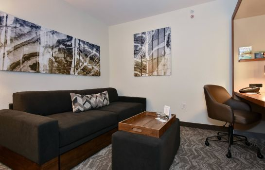 Suite SpringHill Suites Columbia Downtown/The Vista