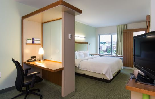 Zimmer SpringHill Suites Columbia Downtown/The Vista