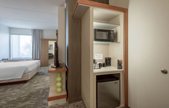 Suite SpringHill Suites Tampa North/I-75 Tampa Palms