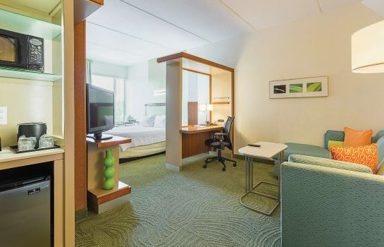 Zimmer SpringHill Suites Tampa North/I-75 Tampa Palms