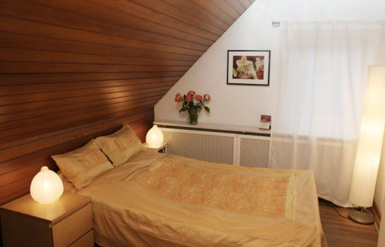 Double room (standard) Rhein River Guesthouse