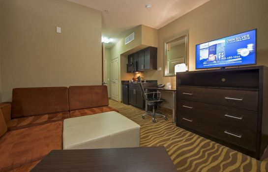 Suite Holiday Inn HOUSTON - WESTCHASE
