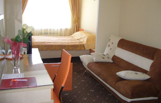Chambre individuelle (standard) Armada Comfort Hotel