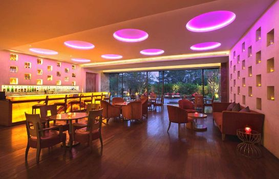 Hotel bar Hyatt Pune
