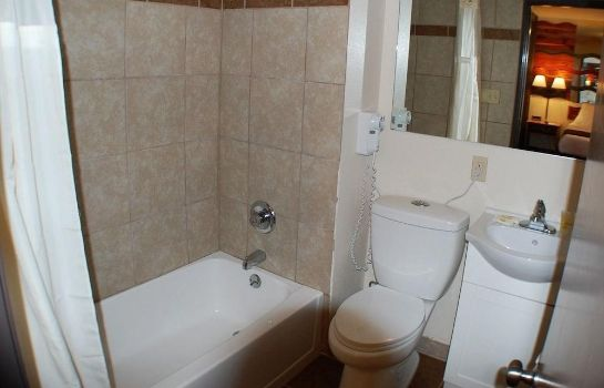 Bagno in camera Alpine Lodge & Resort Burkesville