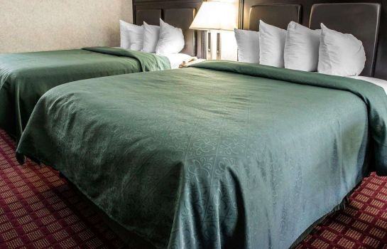 Chambre double (confort) Quality Inn and Suites North