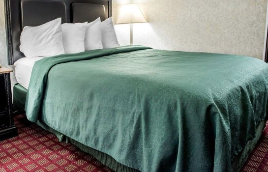 Chambre Quality Inn and Suites North