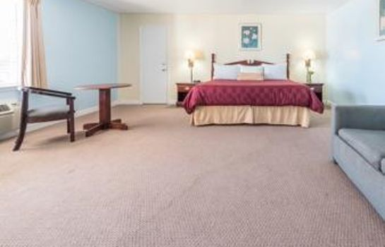 Suite KNIGHTS INN - MINERAL WELLS
