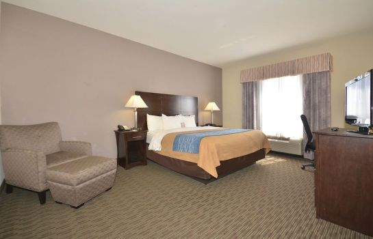 Habitación Comfort Inn & Suites Oklahoma City West - I-40