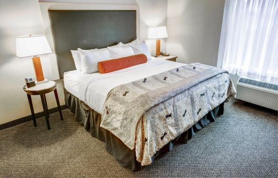 Zimmer Cambria hotel & suites Washington