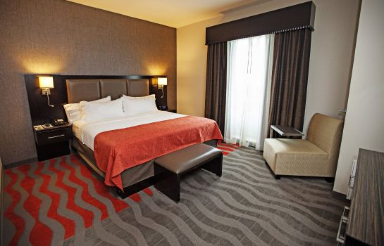 Suite Holiday Inn & Suites HOUSTON WEST - WESTWAY PARK