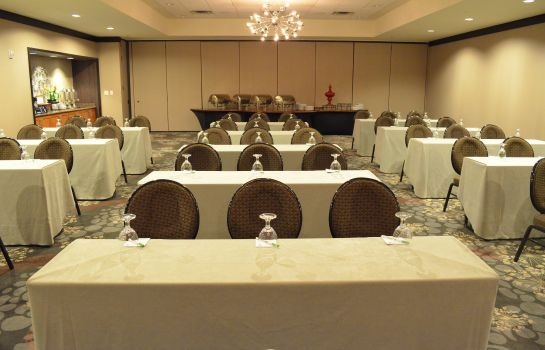 Sala congressi Holiday Inn & Suites HOUSTON WEST - WESTWAY PARK