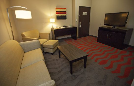 Info Holiday Inn & Suites HOUSTON WEST - WESTWAY PARK