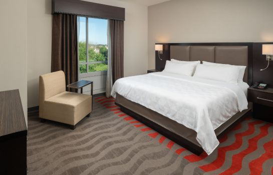 Kamers Holiday Inn & Suites HOUSTON WEST - WESTWAY PARK