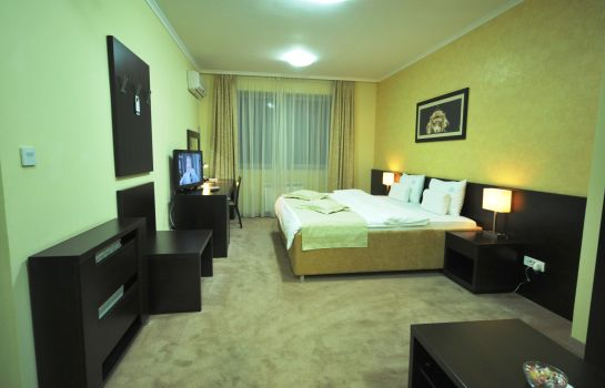 Double room (standard) Nevski