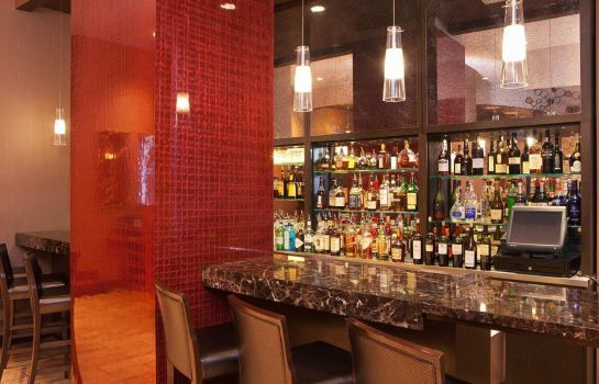 Hotel-Bar DoubleTree by Hilton New York City - Financial District