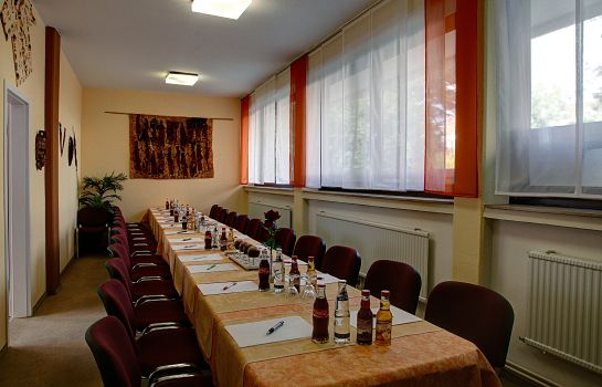 Sala konferencyjna Pension Hages