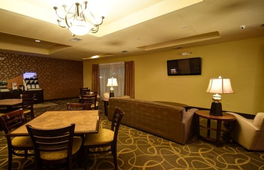 Hotelhalle Holiday Inn Express & Suites DEL RIO