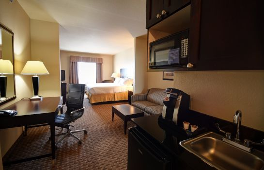 Suite Holiday Inn Express & Suites DEL RIO