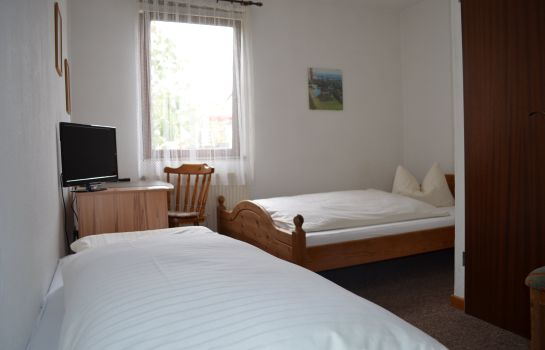 Double room (standard) Leipziger Hof Pension