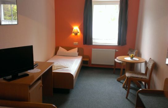 Single room (standard) Gasthof zum Fürstenthal