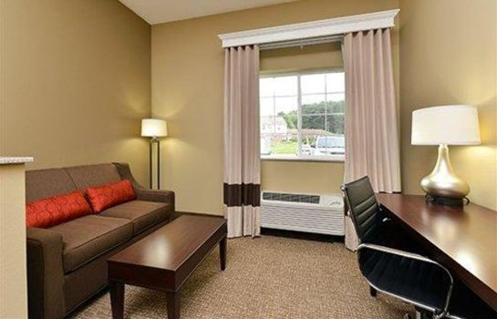 Suite COMFORT INN AND SUITES MANHEIM