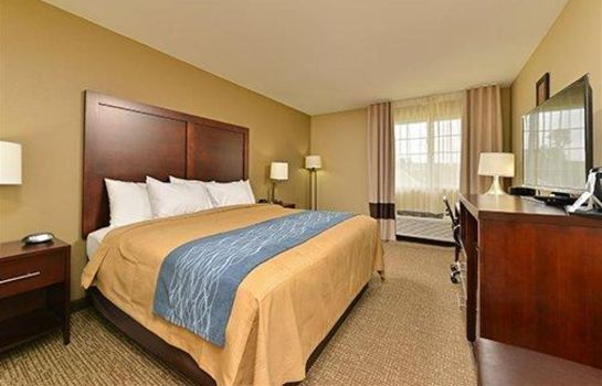 Camera COMFORT INN AND SUITES MANHEIM