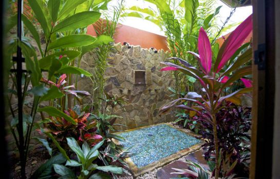 Suite Nayara Hotel Spa and Gardens