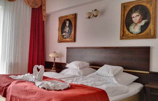 Chambre double (confort) Prawdzic Resort & Conference