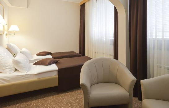Habitación Mercure Maribor City Center