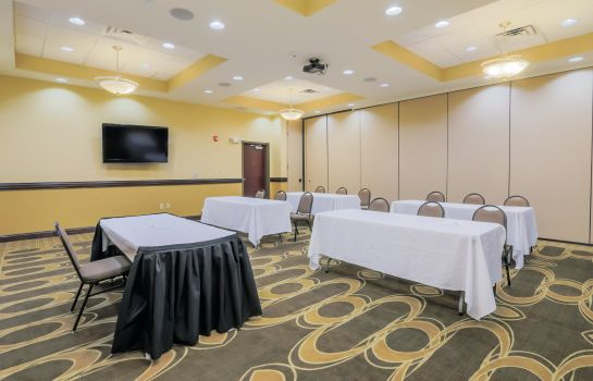 Sala de reuniones Holiday Inn MOBILE - AIRPORT
