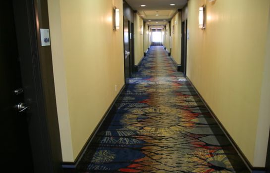 Hotelhalle Holiday Inn Express & Suites CORPUS CHRISTI (NORTH)