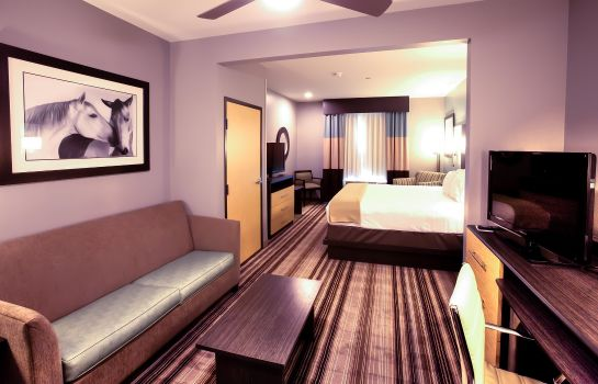 Suite Holiday Inn Express & Suites AMARILLO WEST