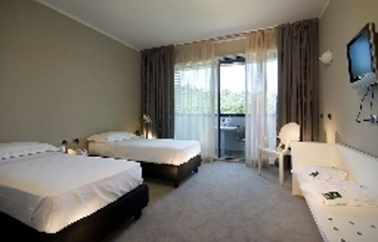 Double room (standard) Hotel Delle Terme