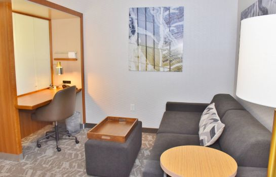 Suite SpringHill Suites Grand Junction Downtown/Historic Main Street