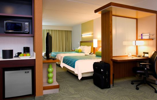 Zimmer SpringHill Suites San Antonio Alamo Plaza/Convention Center