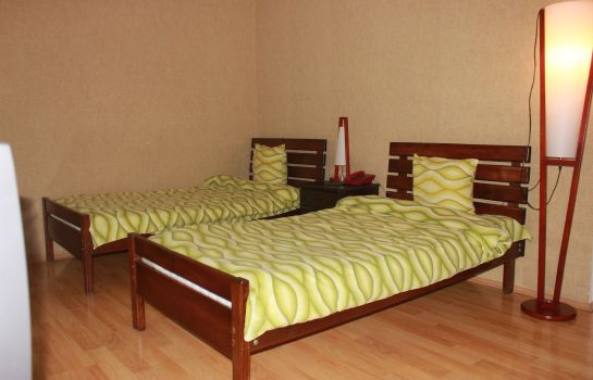 Double room (standard) Argo Palace