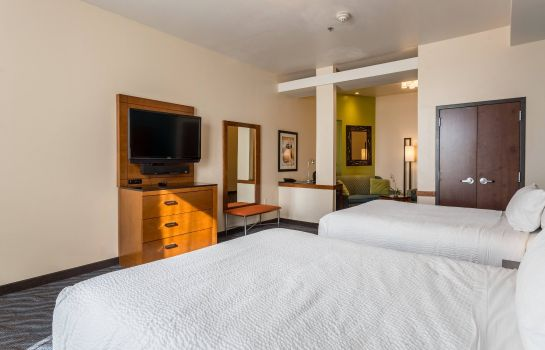 Suite Fairfield Inn & Suites Alamogordo