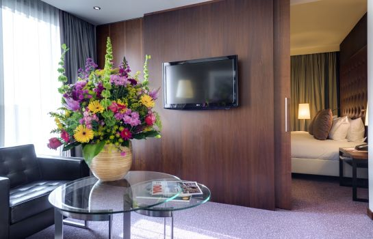 Suite Crowne Plaza AMSTERDAM - SOUTH