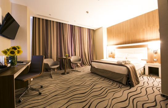 Single room (standard) Premier Palace SPA Hotel