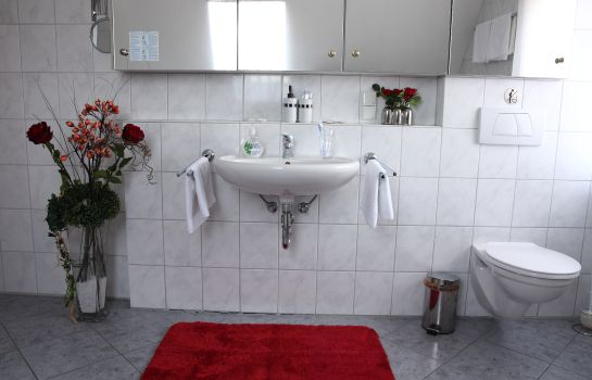 Bagno in camera Willma Apartmenthaus