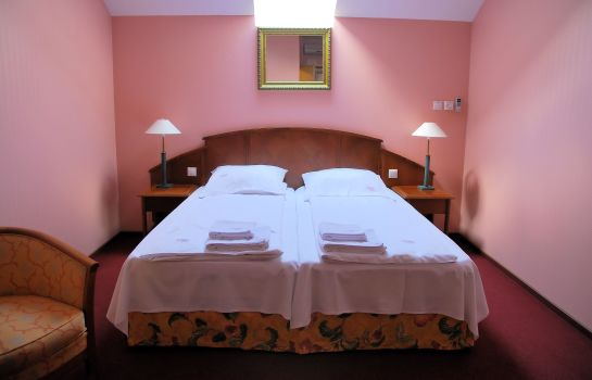 Double room (superior) Gregor Pensjonat Fitness & SPA