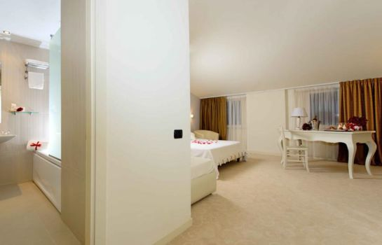 Double room (superior) Virginia Palace Hotel & SPA